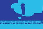 brandon back pain relief chiropractic logo